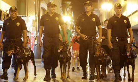 Il Dobermann come cane di polizia, seconda parte